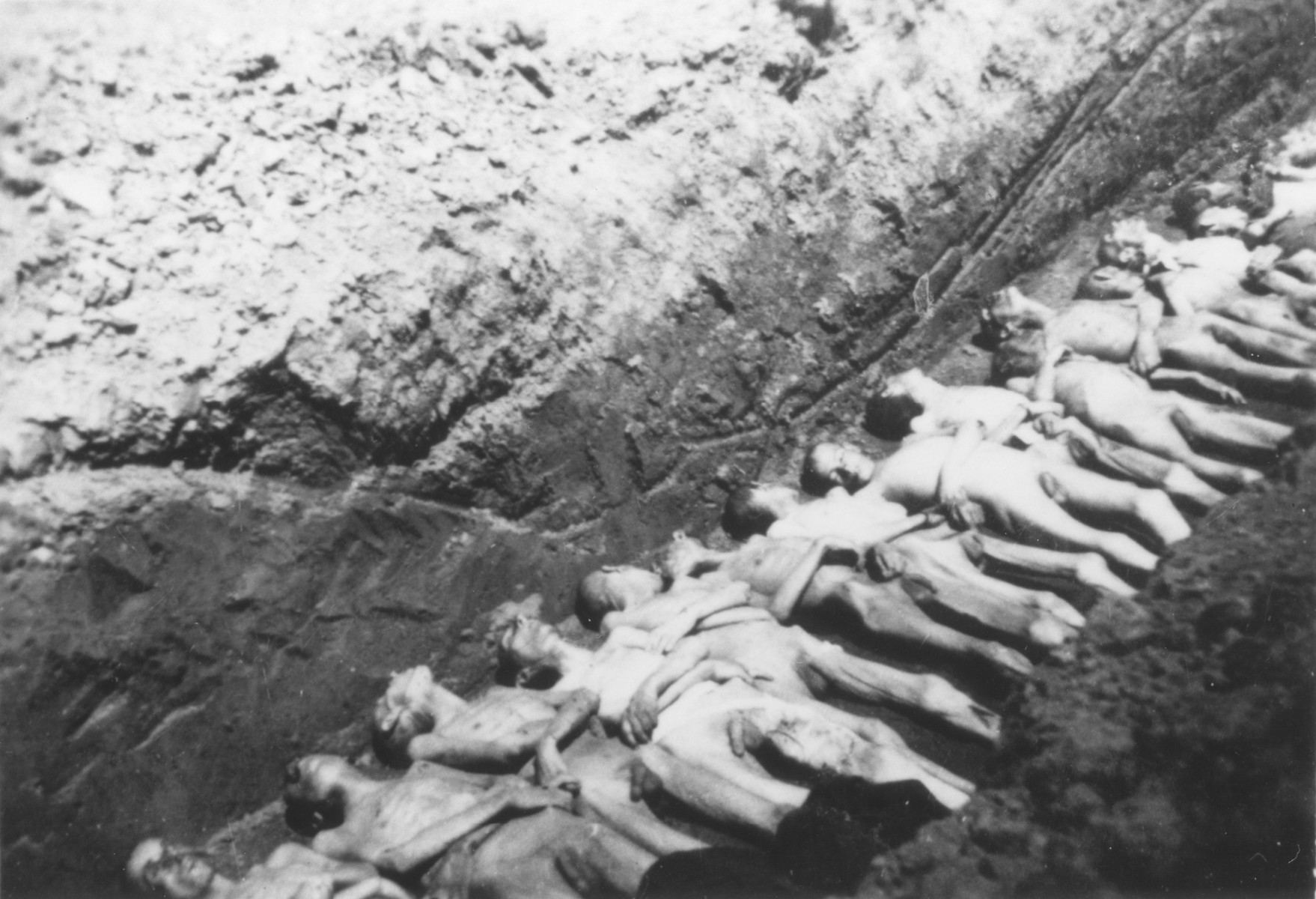 The bodies of former inmates are laid out in a mass grave at the Mauthausen concentration camp.