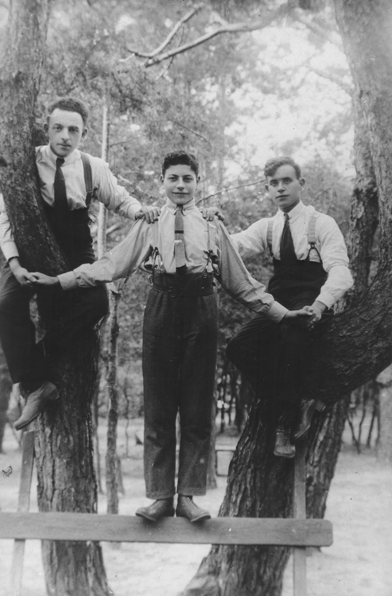 Three Jewish youth pose in the branches of a tree in a park.  Shlomo Halter (uncle of the donor) is in the center.   After the start of World War II, Shlomo Halter, his wife and son, Marek, became imprisoned in the Warsaw ghetto. They escaped and fled to the Soviet Union.  They survived the war and came to Paris in 1950.  Marek later became a noted author.