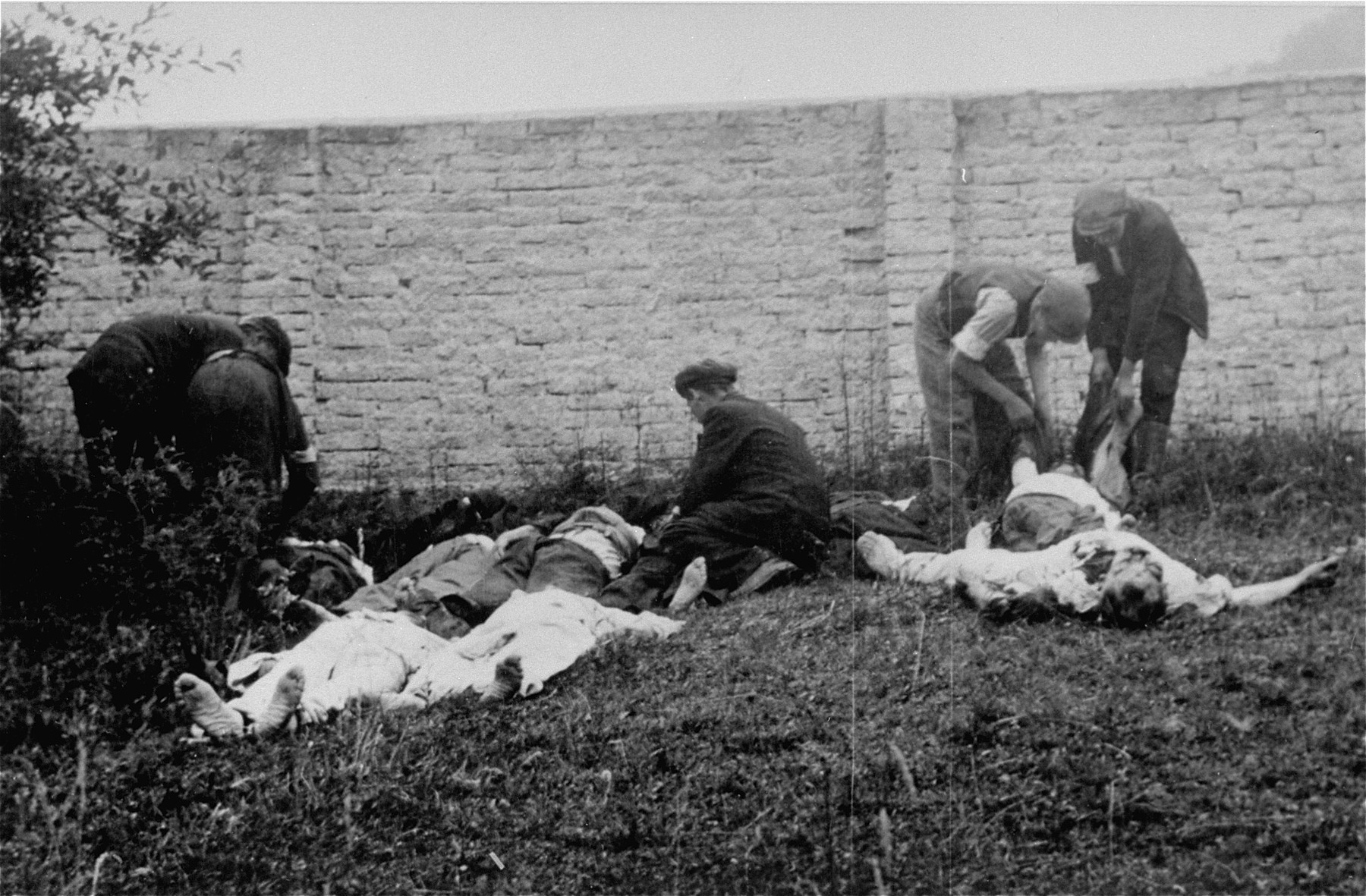 The bodies of sixty Limanowa Jews who were executed in the Jewish cemetery, are prepared for burial.
