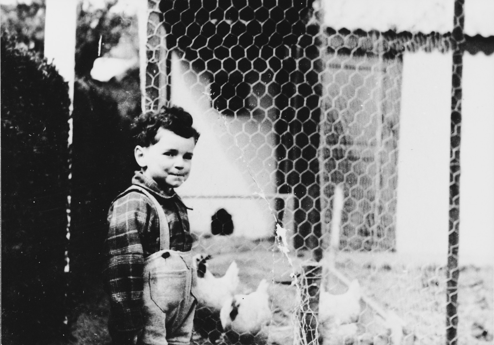 A little boy, who had been hidden by Andree Geulen, poses next to a chicken coop on a farm.