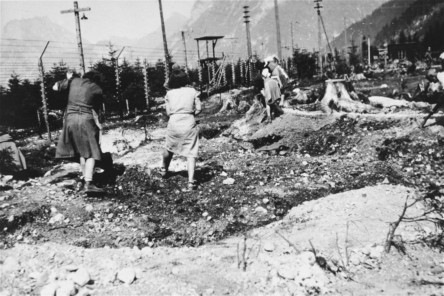 Austrian women exhume graves in the Ebensee concentration camp.
