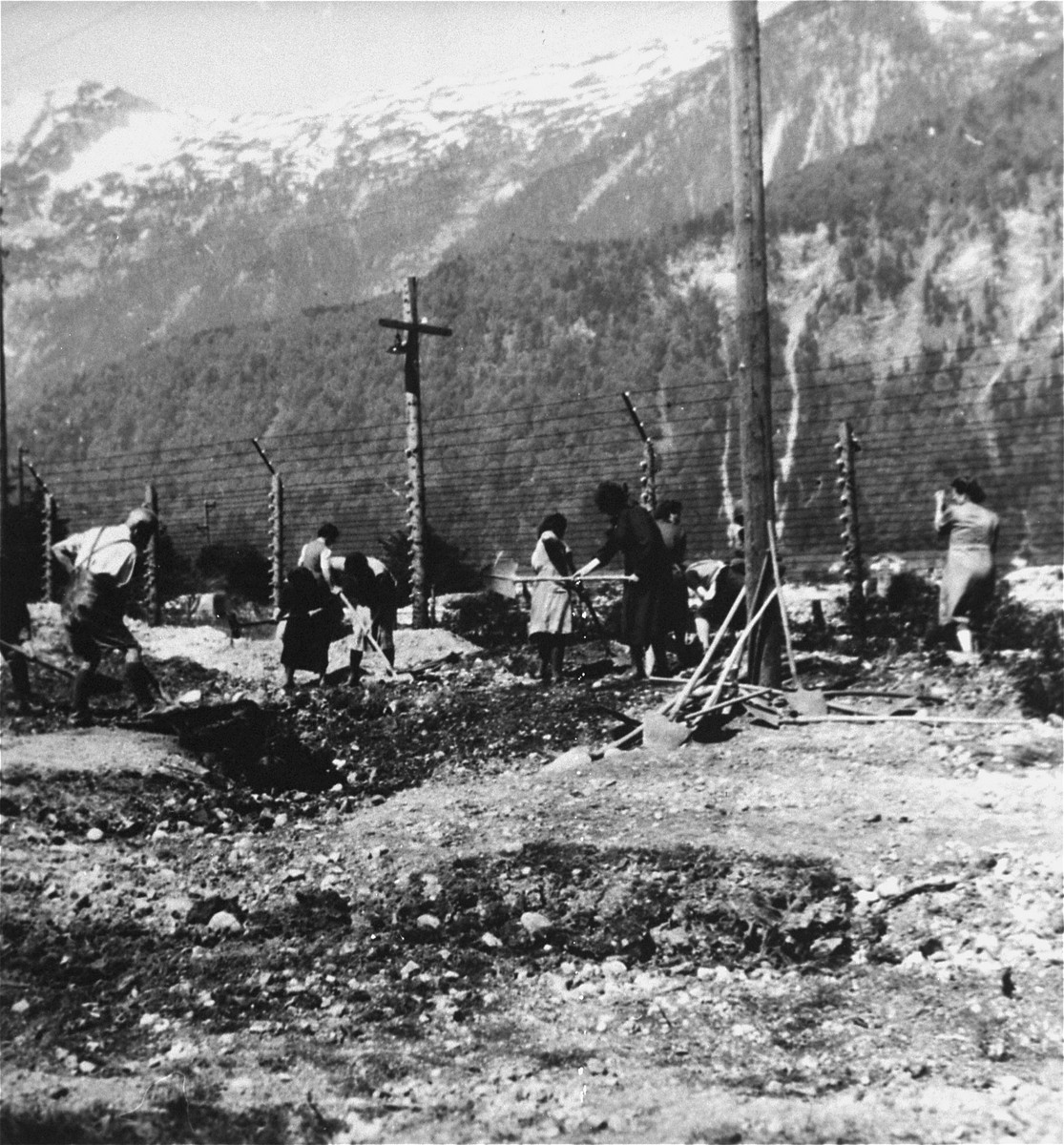 Austrian civilians exhume mass graves in the Ebensee concentration camp.