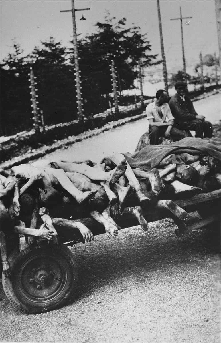 Austrian civilians rest after having loaded their cart with the bodies of Ebensee prisoners which are being transported to a burial site.