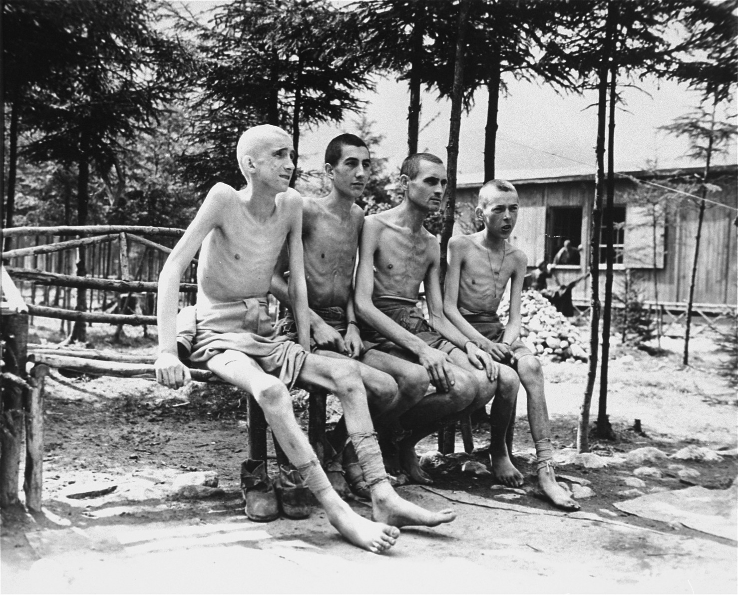 "Four emaciated survivors sit outside in the newly liberated Ebensee concentration camp.  The original Signal Corps caption reads,  ""EBENSEE CONCENTRATION CAMP. In the Austrian Alps at Ebensee, Austria, units of the 80th Div, of the Third U...  found one of the largest and most brutal German concentration camps shortly bef...  of the war in Europe.  The camp contained about 60,000 prisoners of 25 different ... all in various stages of starvation.   The camp reputedly was used for scientifi... on the prisoners, who were used as live guinea pigs.  Conditions for the living ... bably brutal and filthy.  The men were forced to sleep four to a narrow bunk in ... barracs.  They died at the rate of 2000 a week, and their bodies were disposed o... ready for the crematory.  The Germans had fled before they had time to burn them.  ... living are being given care and nourishing food.  When they are strong enough to ... they will be returned to their homes. These photos were taken May 7 and 8, 1945.  PNA                                                            EA 66316 THIS PHOTO SHOWS: These living skeletons are young boys.   U.S. Signal Corps Photo ETO-HQ-45-46147 SERVICED BY LONDON OWI (INNER FULL) CERTIFIED AS PASSED BY SHAEF CENSOR."