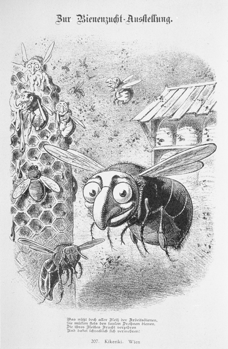 """Caricature from the antisemitic Viennese magazine Kikeriki.  The text reads: """"Concerning the Bee-Keeping Exhibit.  What good is all the hard work of the worker bees, since they have to serve the drones.  They eat the fruits of the [worker bees' labor] and at the same time multiply frightfully.""""   An antisemitic caricature published in Eduard Fuchs, """"Die Juden in der Karikatur: ein Beitrag zur Kulturgeschichte."""" Albert Langen, 1921."""