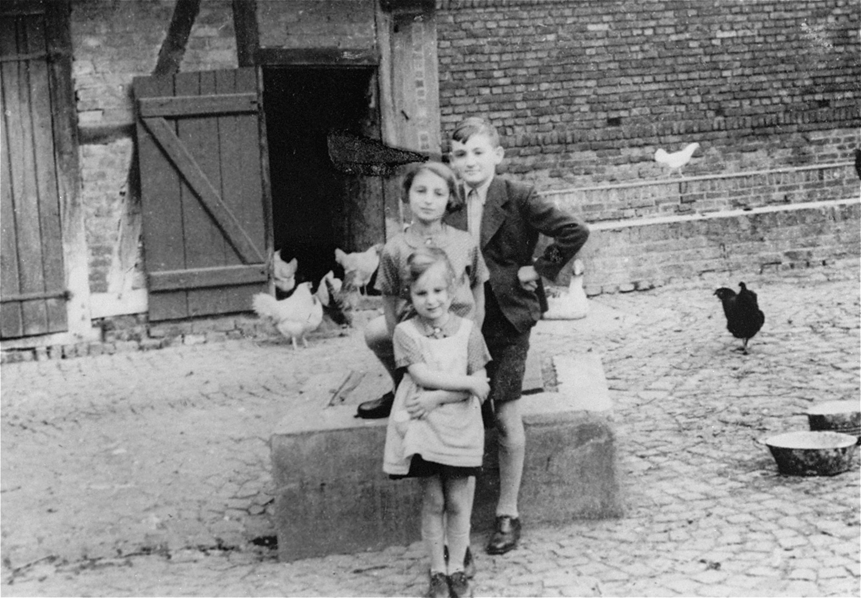 Three Jewish children pose outside on their family farm prior to their emigration from Germany.  Pictured are Gisela Berg, her sister Inge, and their cousin Harvey Meyer. The Meyer family left for the U.S. on the day this photograph was taken.