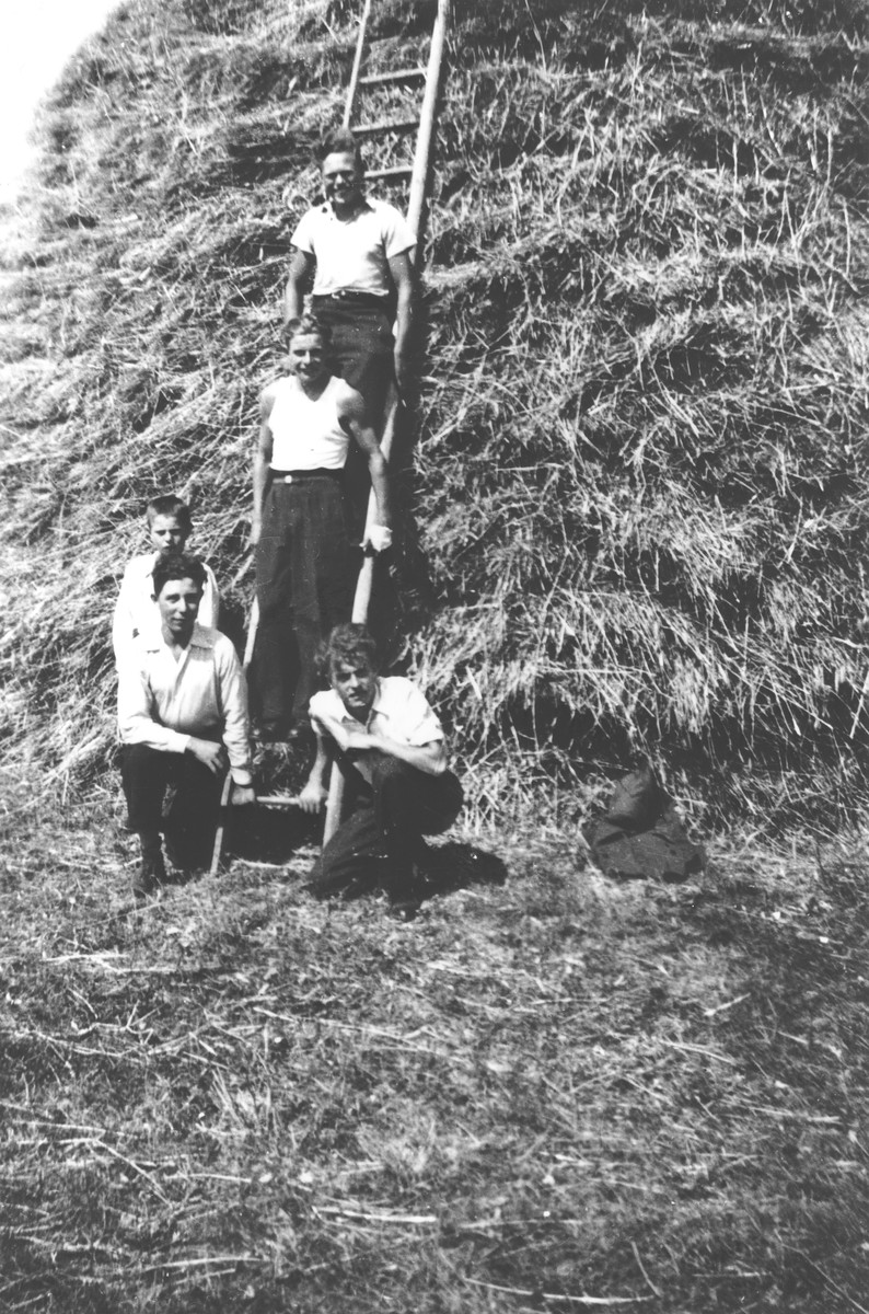 Jewish youth in hiding pose with other agricultural workers on a ladder next to a haystack on a farm in Treves.  Among those pictured are Julien Bluschtein (bottom left) and Herbert Kaliner (top).