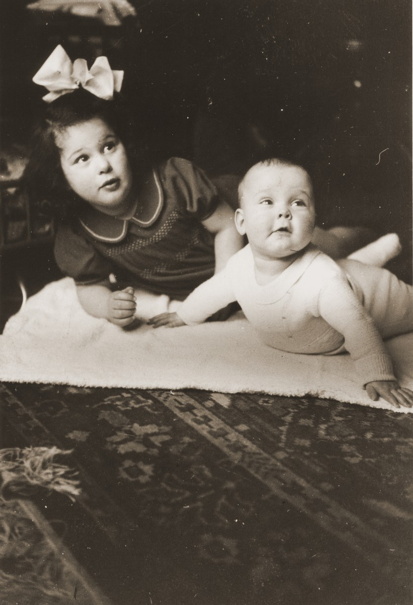 Sisters Hanneke (Hanna Jetty) and Jenneke (Jenny Lina) Leijdesdorff as small children one year before the German occupation.  The sisters (second cousins of the donor) survived the war in hiding, while both parents were killed at Sobibor.