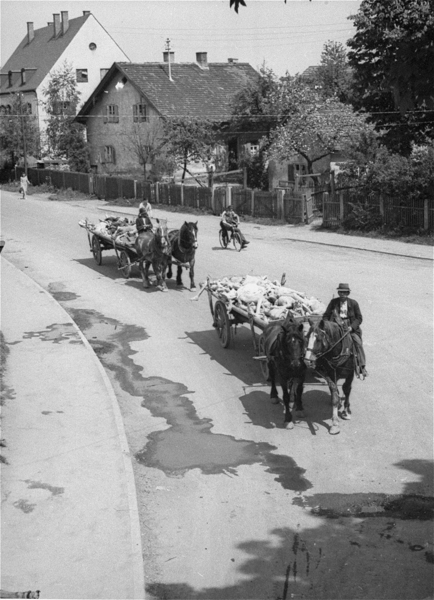 Carts laden with corpses travel through the town of Dachau en route to a burial site.  Allied authorities required local farmers to drive their loaded carts through the town to educate the inhabitants.