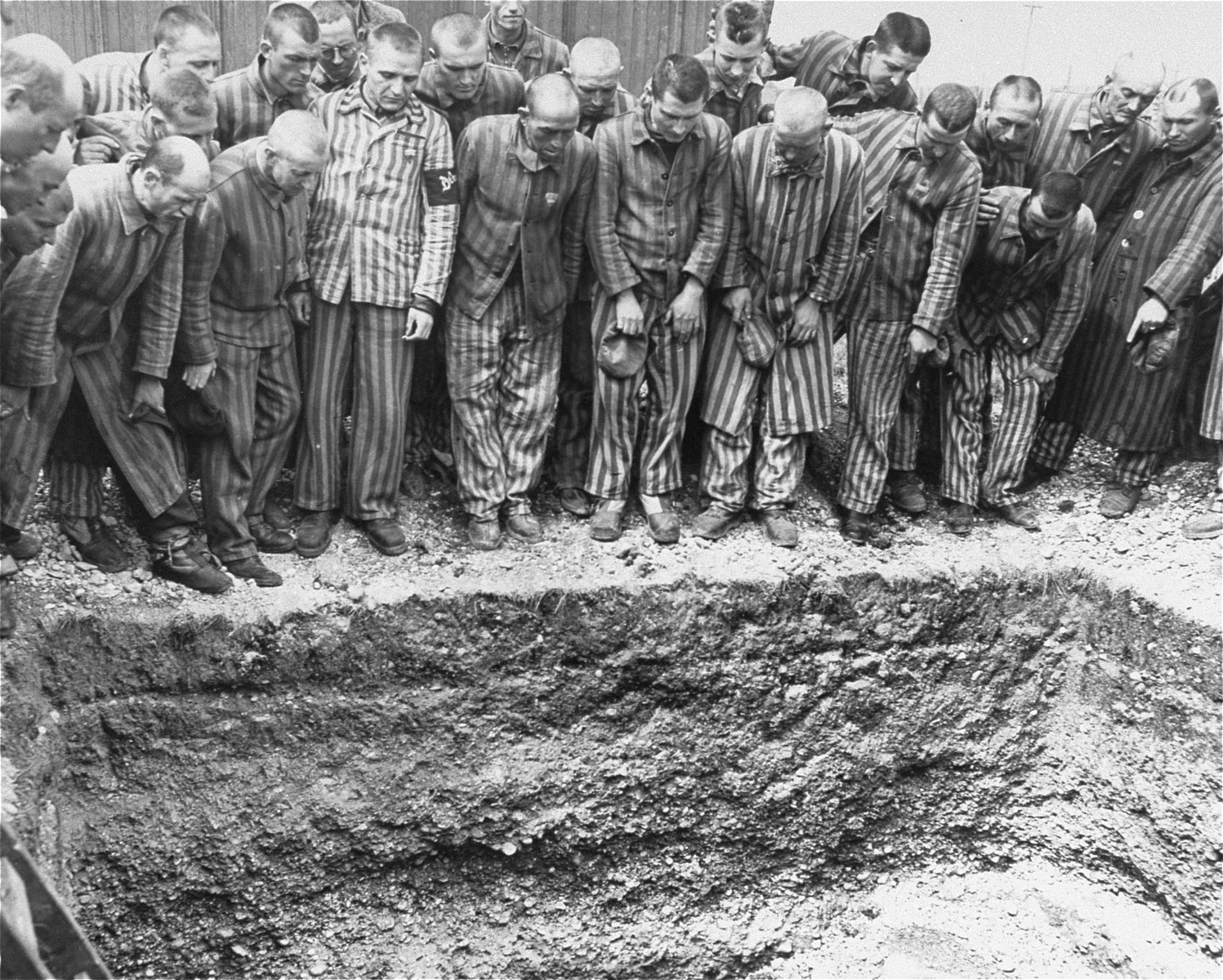 Survivors in Dachau peer into an open mass grave.