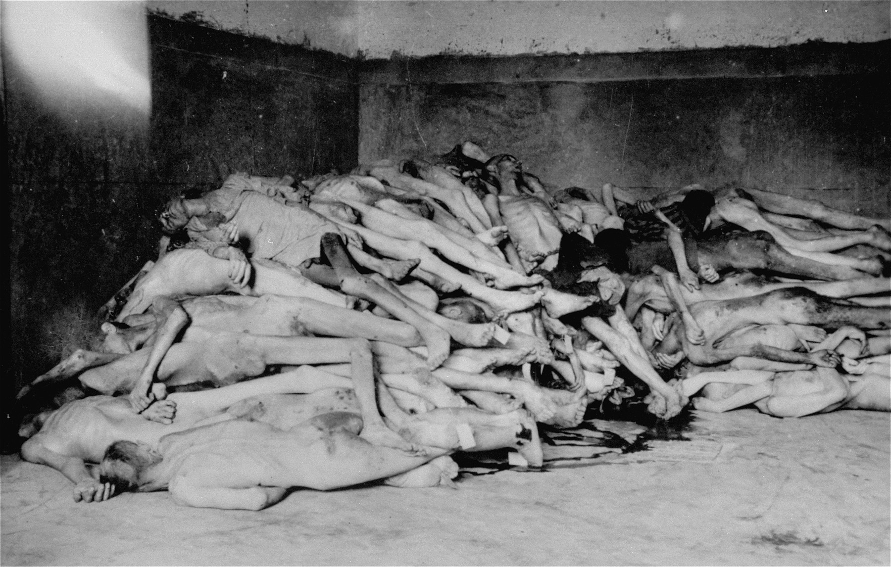 The bodies of former prisoners are piled in the crematorium mortuary in the newly liberated Dachau concentration camp.