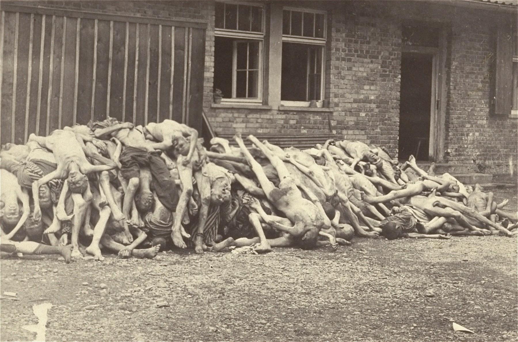 Corpses piled behind the crematorium.