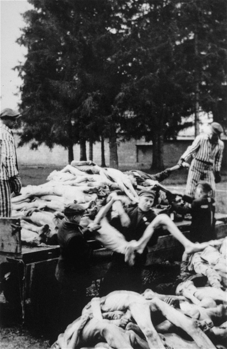 Survivors unload a wagon full of corpses behind the crematorium.  These bodies were brought from other sections of the camp to this spot, where they were then taken to mass graves for burial.