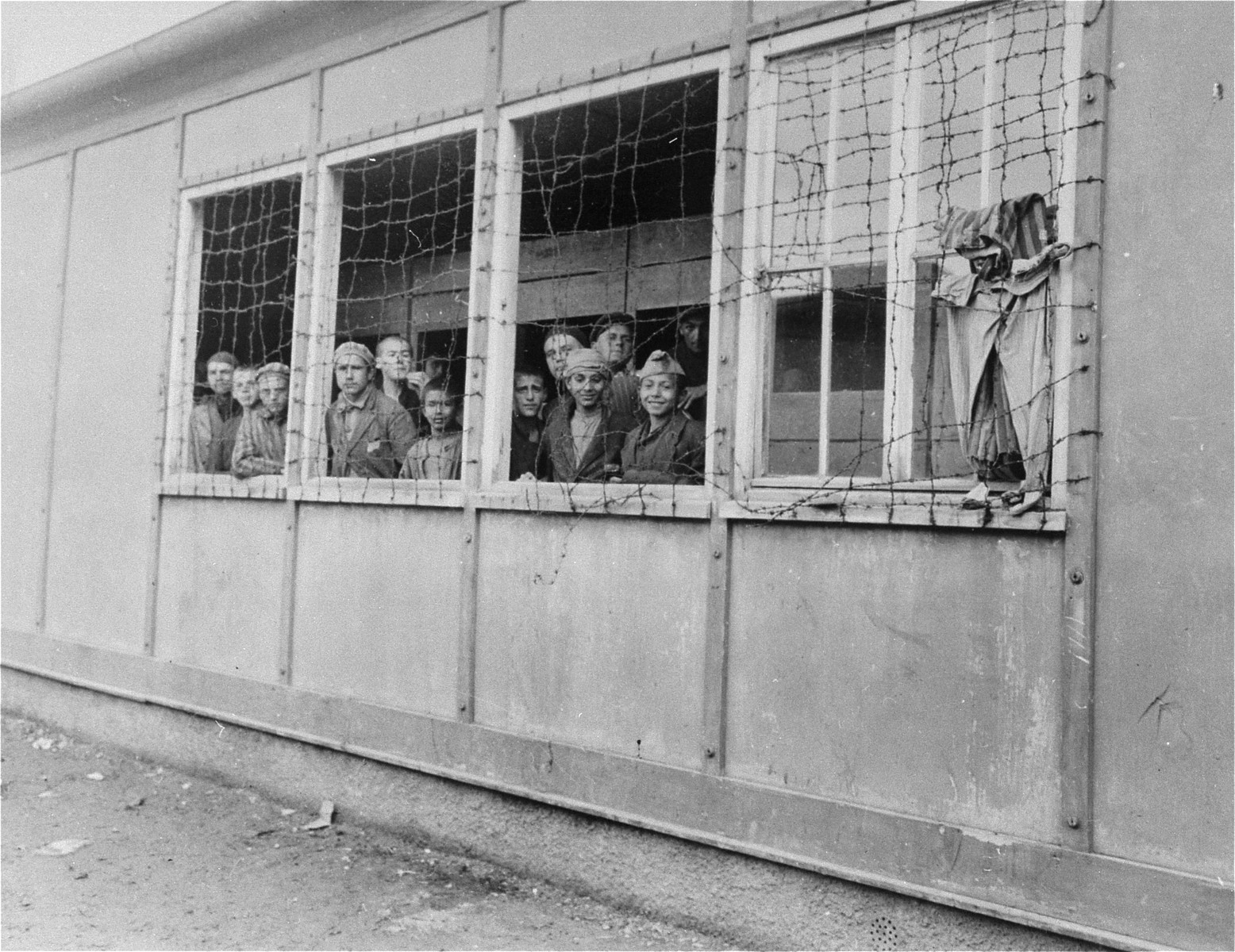 Survivors look out the barbed wire covered windows of barracks in the newly liberated Dachau concentration camp.