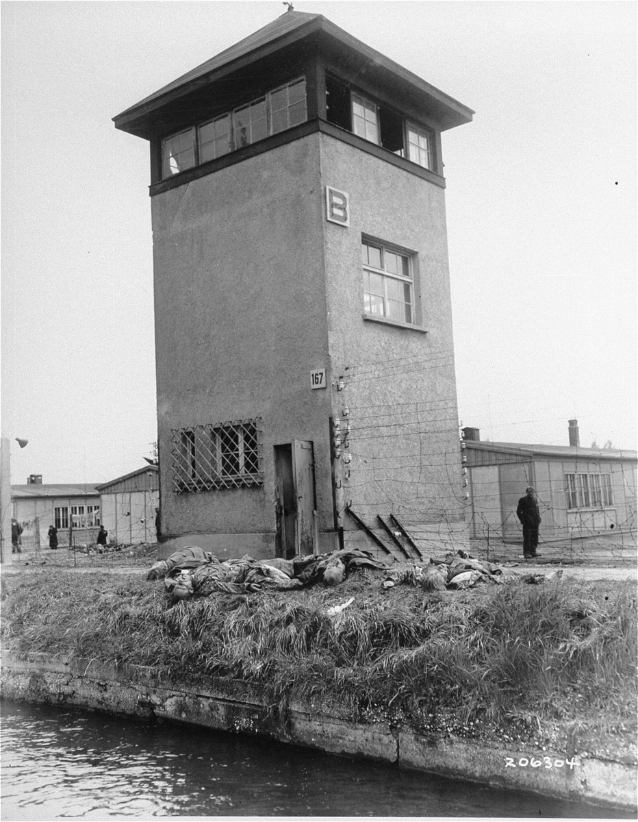 The bodies of SS guards, who were shot by American troops, lie on the edge of the moat at the base of a guard tower in Dachau.