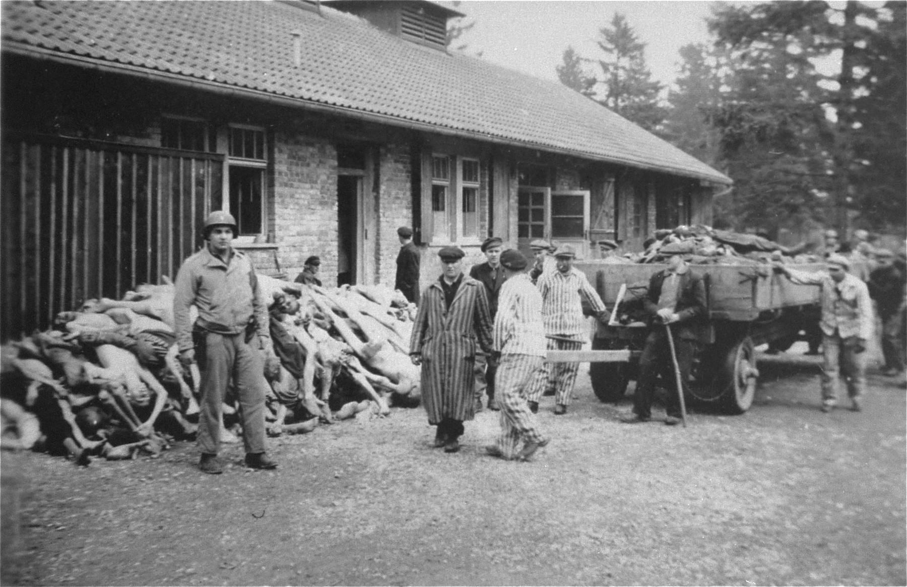 Under the supervision of an American soldier, survivors bring carts laden with corpses to a spot behind the crematorium.