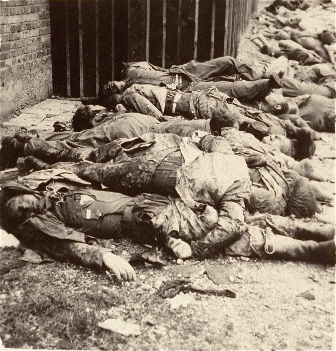 The bodies of SS personnel who were executed by U.S. troops during the liberation of Dachau.