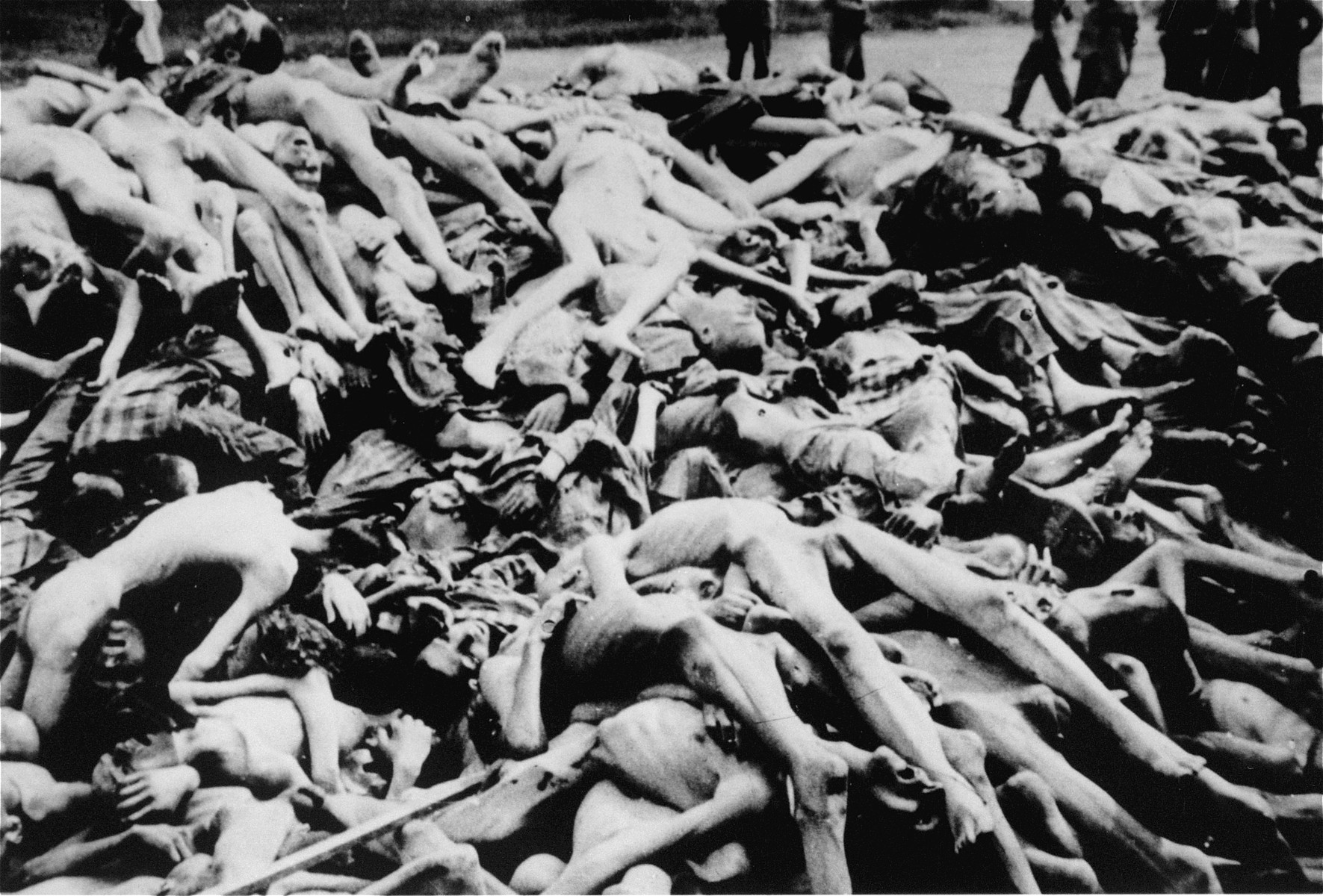 A pile of corpses lies on the ground in the newly liberated Dachau concentration camp.