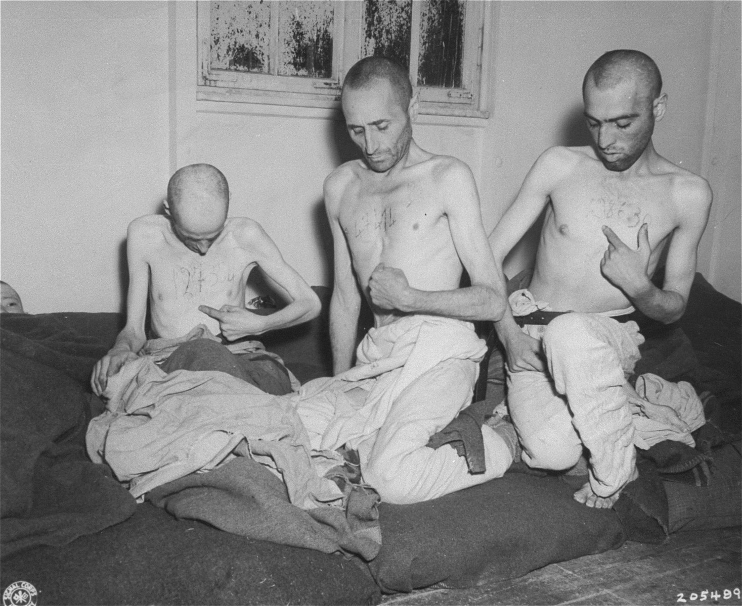 Three survivors of the death train in Dachau point to serial numbers they scratched into their skin for fear that they would remain unidentified if they died.