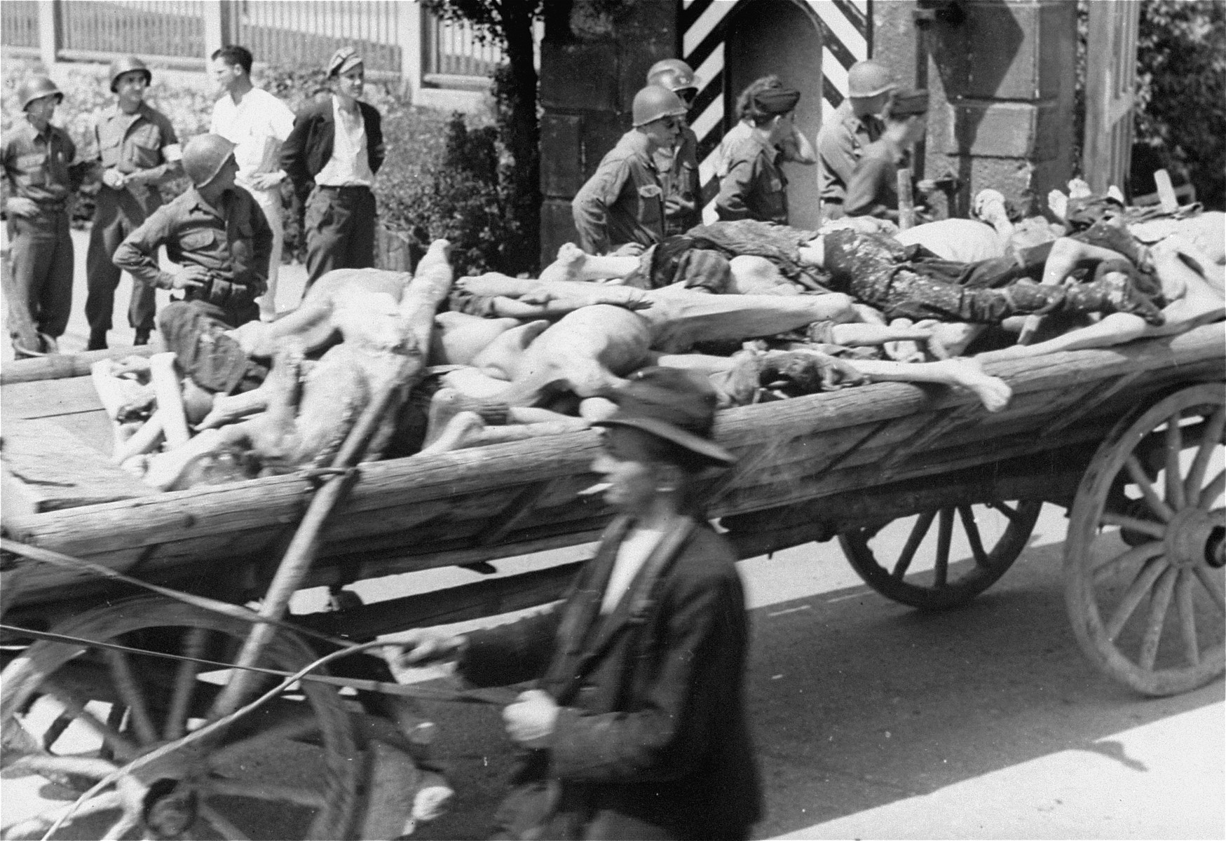 American soldiers watch a passing cart laden with corpses intended for burial leave the compound of the Dachau concentration camp.  Allied authorities required local farmers to drive their loaded carts through the town of Dachau as an education for the inhabitants.