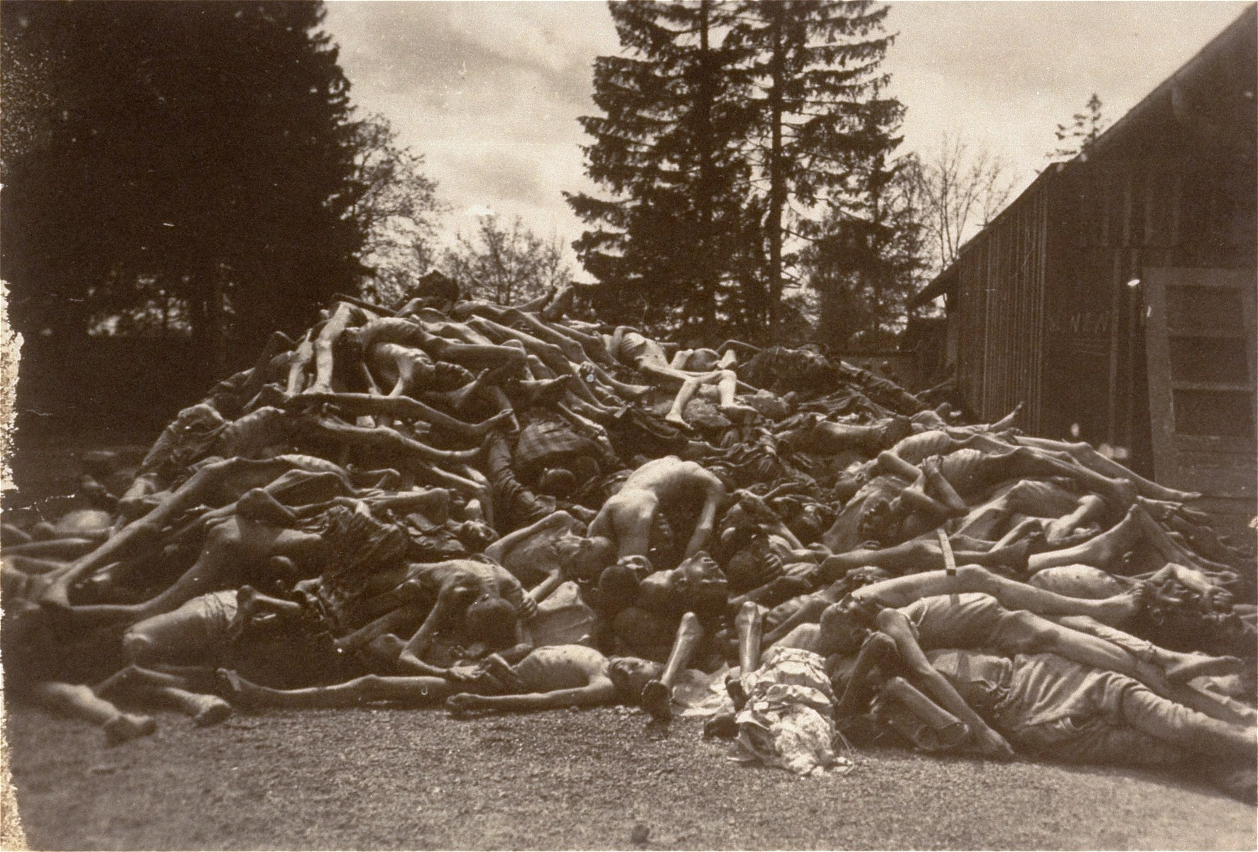 Corpses piled behind the crematorium.