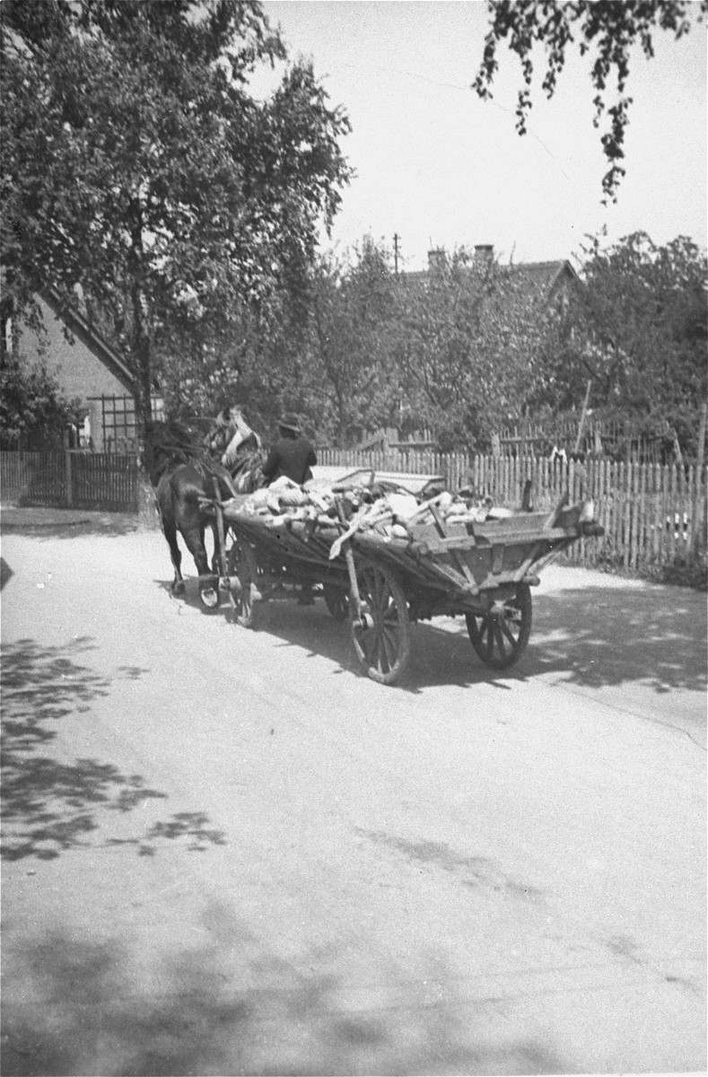 A German civilian transports corpses from the Dachau concentration camp to a nearby mass grave.