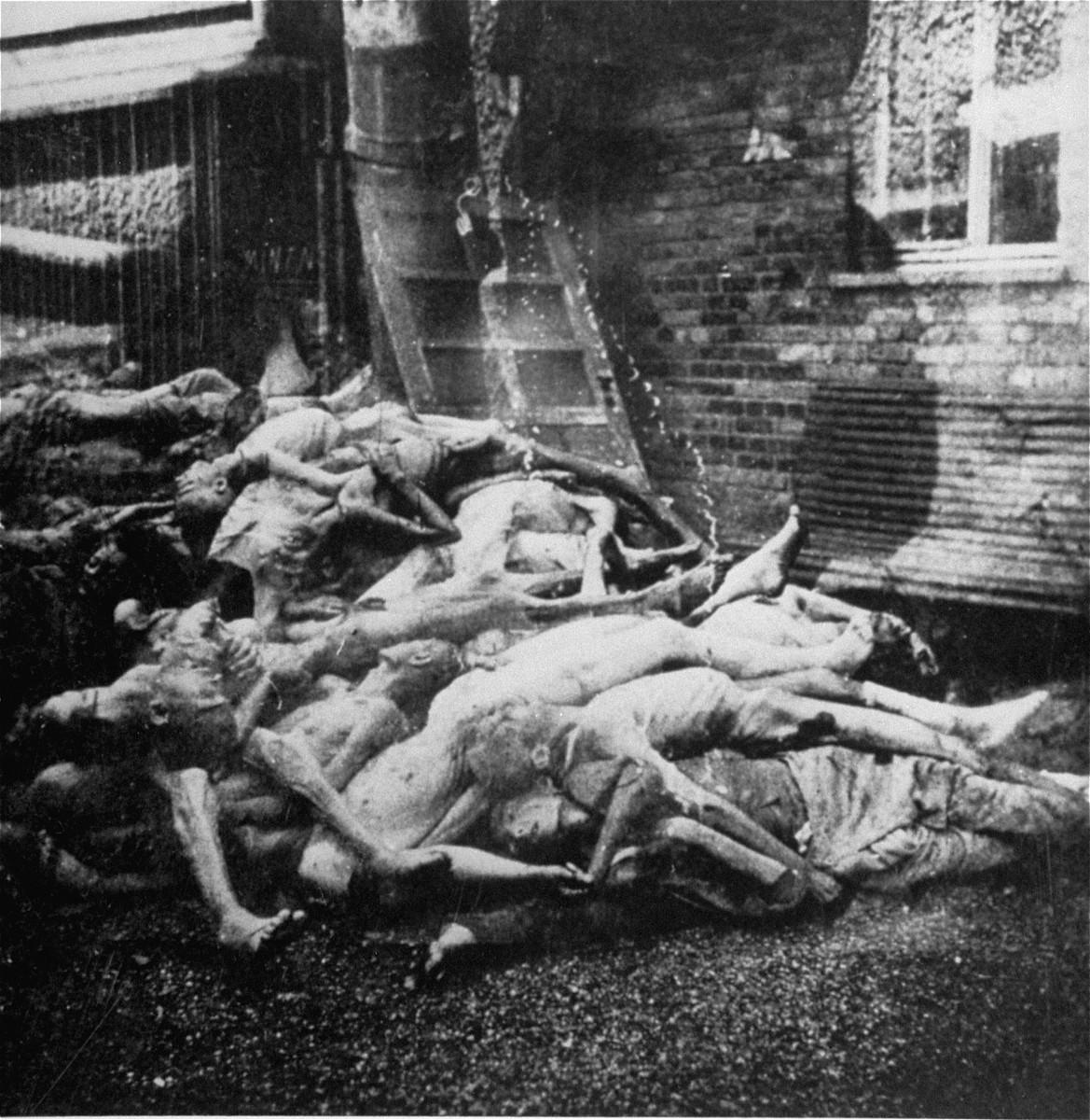 Corpses in Dachau piled behind the crematorium.