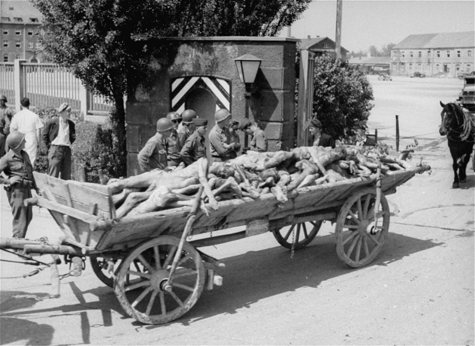 U.S. troops watch a passing cart laden with corpses intended for burial leave the compound of the Dachau concentration camp.  Allied authorities required local farmers to drive their loaded carts through the town of Dachau as an education for the inhabitants.