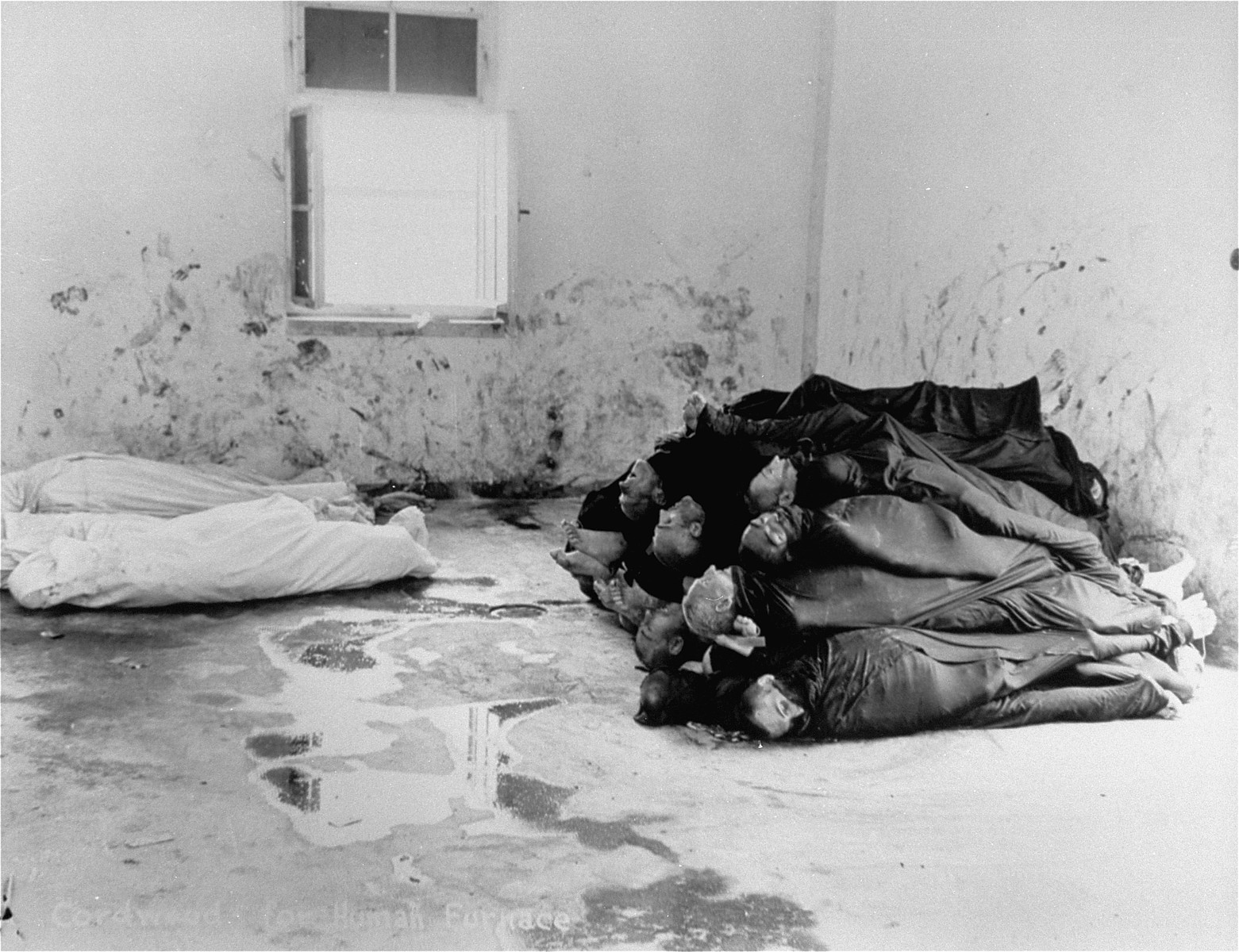 Corpses are piled in the crematorium mortuary in the newly liberated Dachau concentration camp.