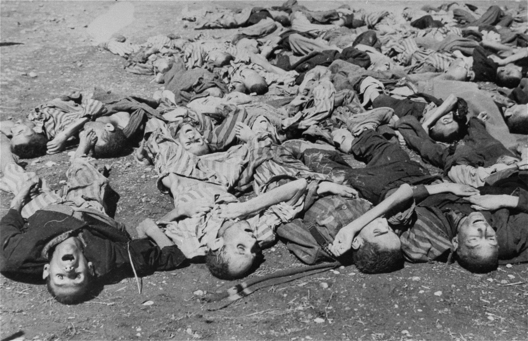 Corpses lie in a pile on the ground in the newly liberated Dachau concentration camp.