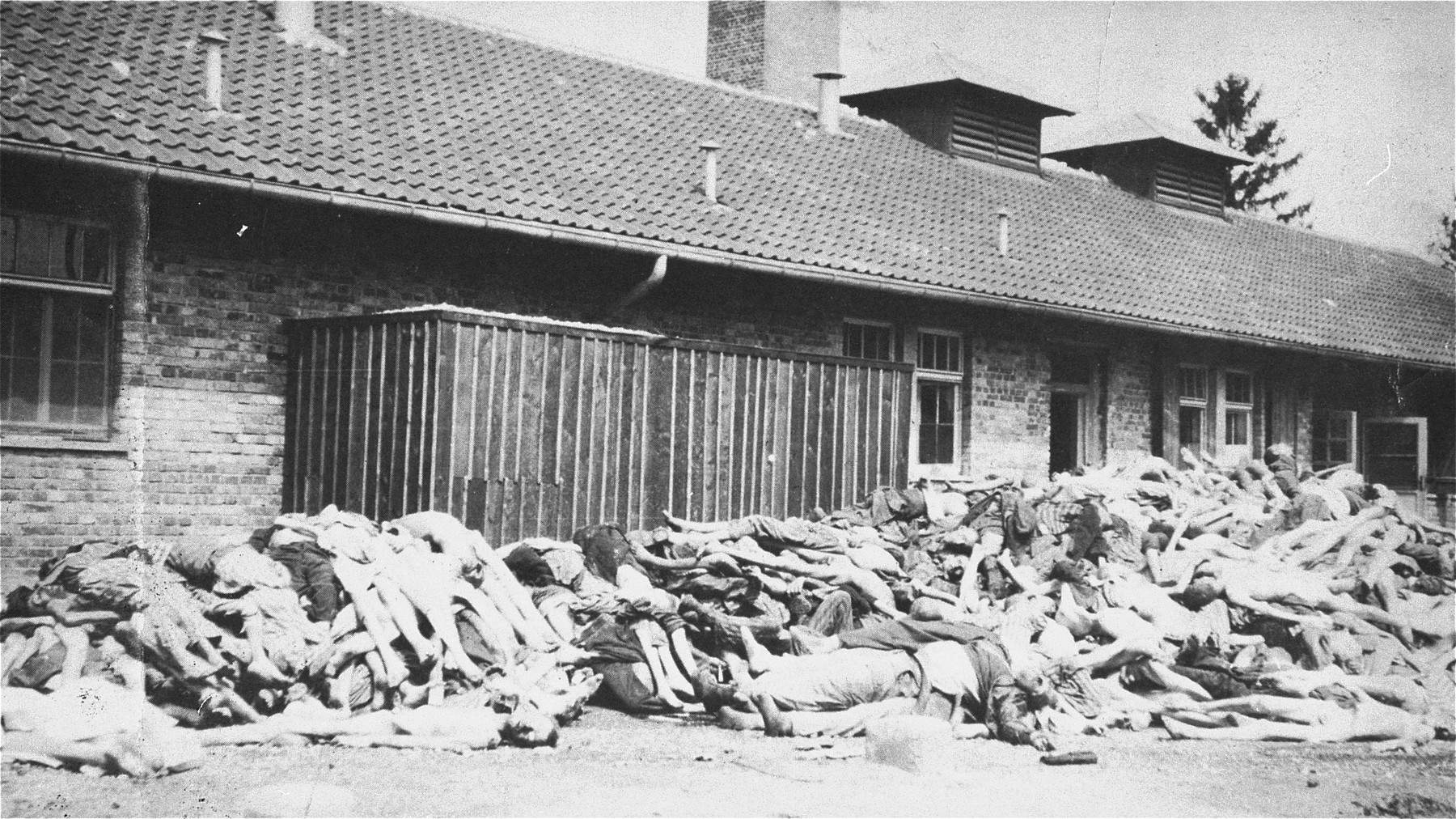 Corpses stacked outside of the crematorium.