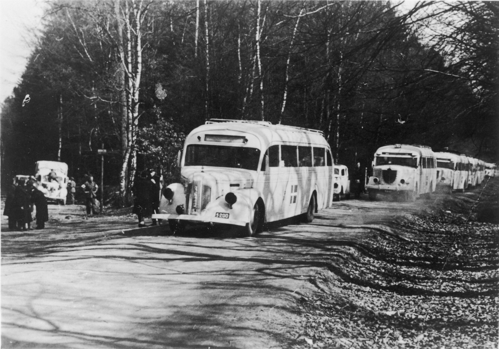 A convoy of Swedish Red Cross white buses, which are being used to evacuate concentration camp prisoners and transport them to Sweden, are lined up on a road.