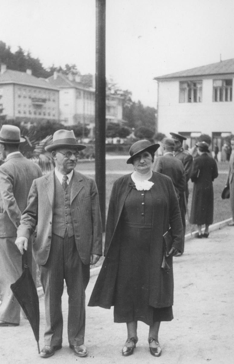 Heinrich and Selma Stapler walk down a street in Vienna.
