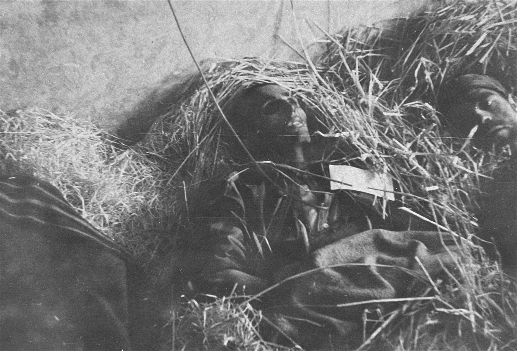 A survivor in Woebbelin lies next to a dead man in what may be an infirmary.