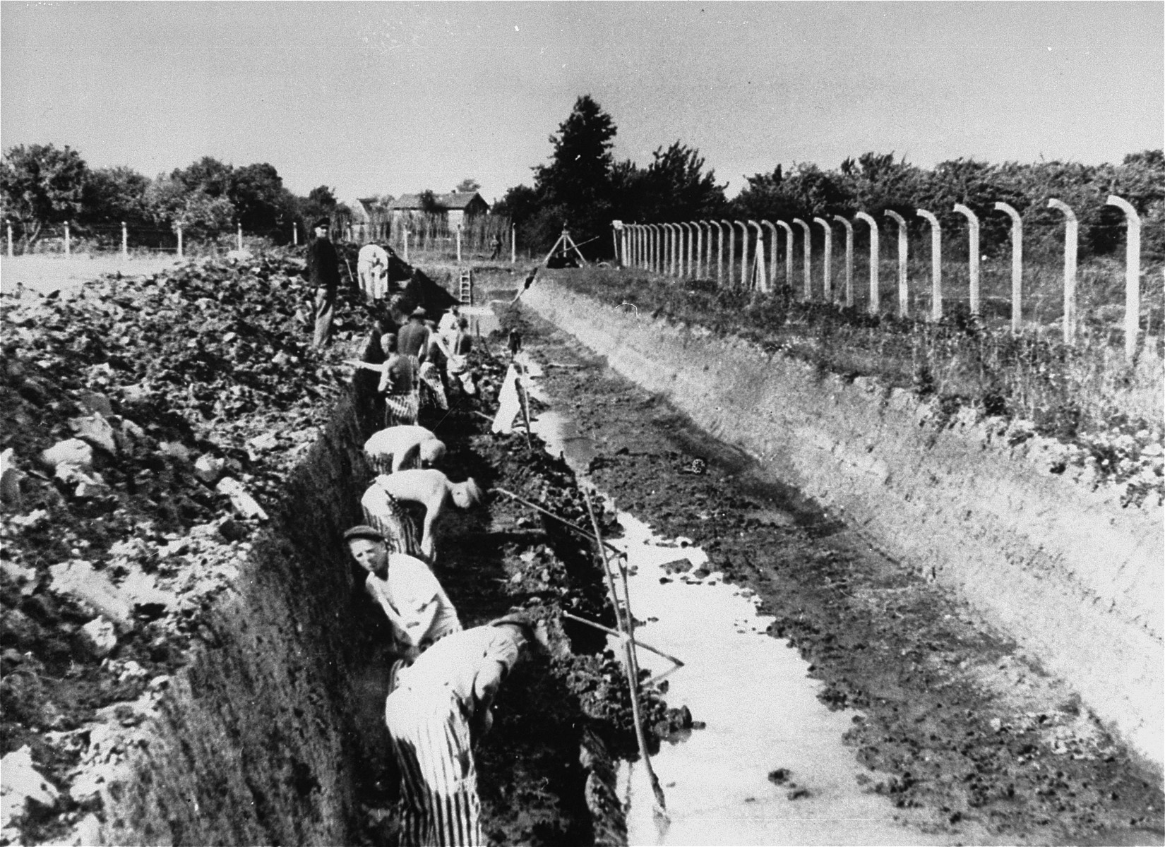 Prisoners at forced labor in the Neuengamme concentration camp.