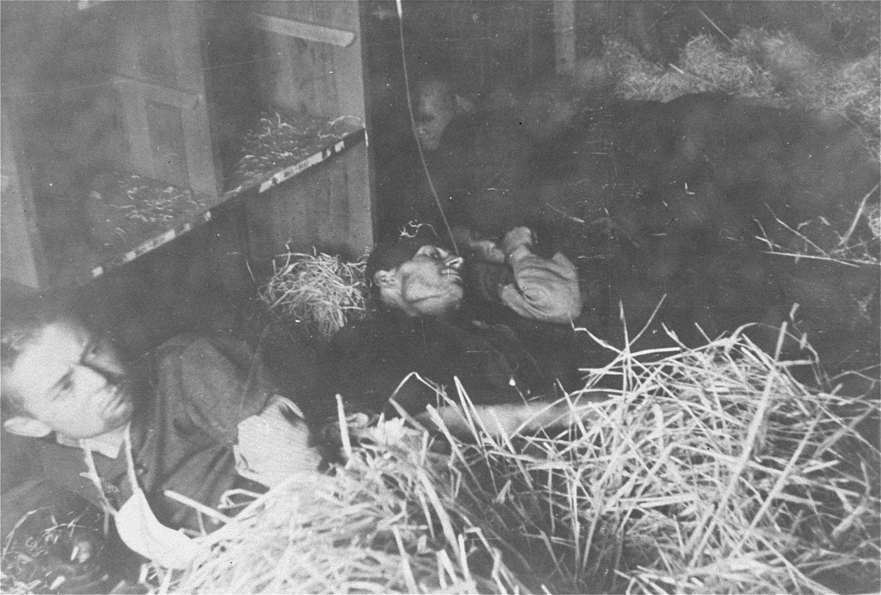Survivors in a barracks in the Woebbelin concentration camp.