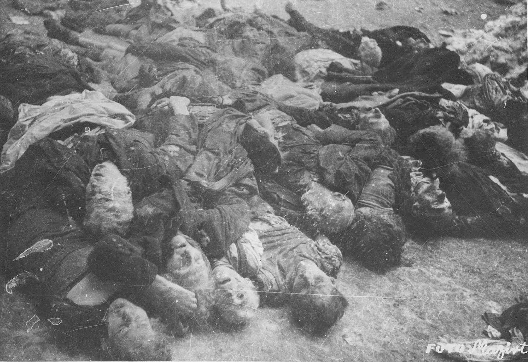 "Corpses of Jews in the courtyard of the Dohany Street Synagogue.  During the last few months of the war in Hungary, the Nyilas (Arrow Cross) exploited the anarchic conditions in the areas still under their control to continue their excesses against the Jews.  This was particularly true in Budapest, despite the fact that the Soviet army had completely encircled the city by December 27, 1944.  The reign of terror that had begun with Szalaszi's assumption of power on October 15, 1944, went almost completely unchecked after the beginning of the Soviet siege on December 9.  Gangs of armed Nyilas--mostly teenagers--roamed the city hunting for Jews in hiding.  They searched them out in hospitals, shelters, homes outside the ghetto, in the International Ghetto, and in the large ghetto.  After robbing the Jews of their remaining valuables, the Nyilas shot them on the spot or marched them to the banks of the Danube, where they shot them, and threw their bodies into the river.  A large number of Jews who were murdered in the ghetto were buried in mass graves in the courtyard of the Dohany Street Synagogue.  The most horrific of these attacks occurred on the Pest side of the capital, at the two Jewish hospitals located on Maros and Varosmajor streets.  The Maros Street hospital, which had operated under the protection of the International Red Cross during the German occupation, was attacked on January 11, 1945.  After the initial melee, during which Nyilas gang members wantonly destroyed hospital equipment, threw patients out of their beds and trampled them, and murdered staff members, survivors were ordered to dig a mass grave, remove and bury the bodies.  They were then shot and buried in the grave themselves.  Only one nurse survived of the 92 people that were in the hospital at the time.  Three days later, on January 14, the hospital on Varosmajor Street was attacked, resulting in the deaths of 150 patients and medical staff.  These manhunts and massacres continued unabated until the liberation of Budapest in April.  [R. Braham, ""The Politics of Genocide,"" vol. 2: 995-1007]"