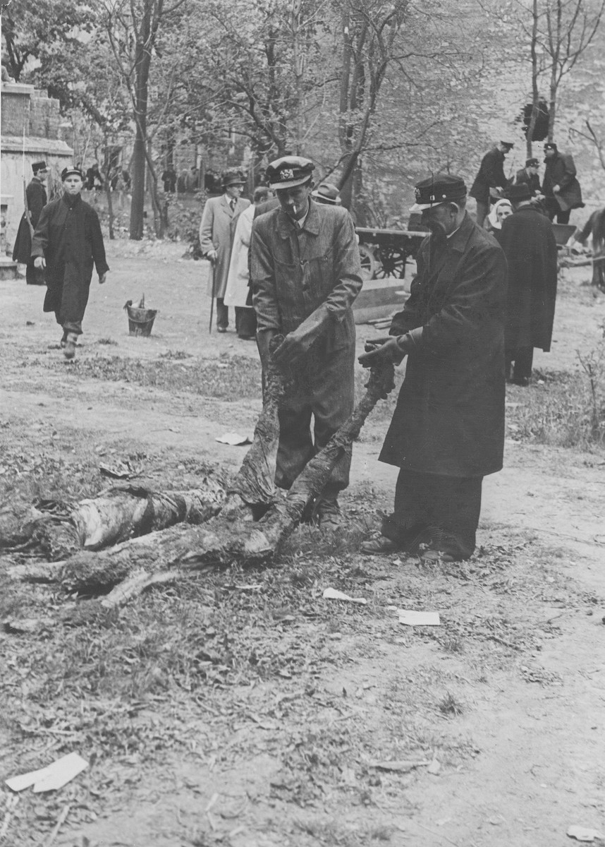 Hungarian workmen exhume corpses of Jews from a mass grave.  The victims were killed in the Maros Street Hospital massacre.