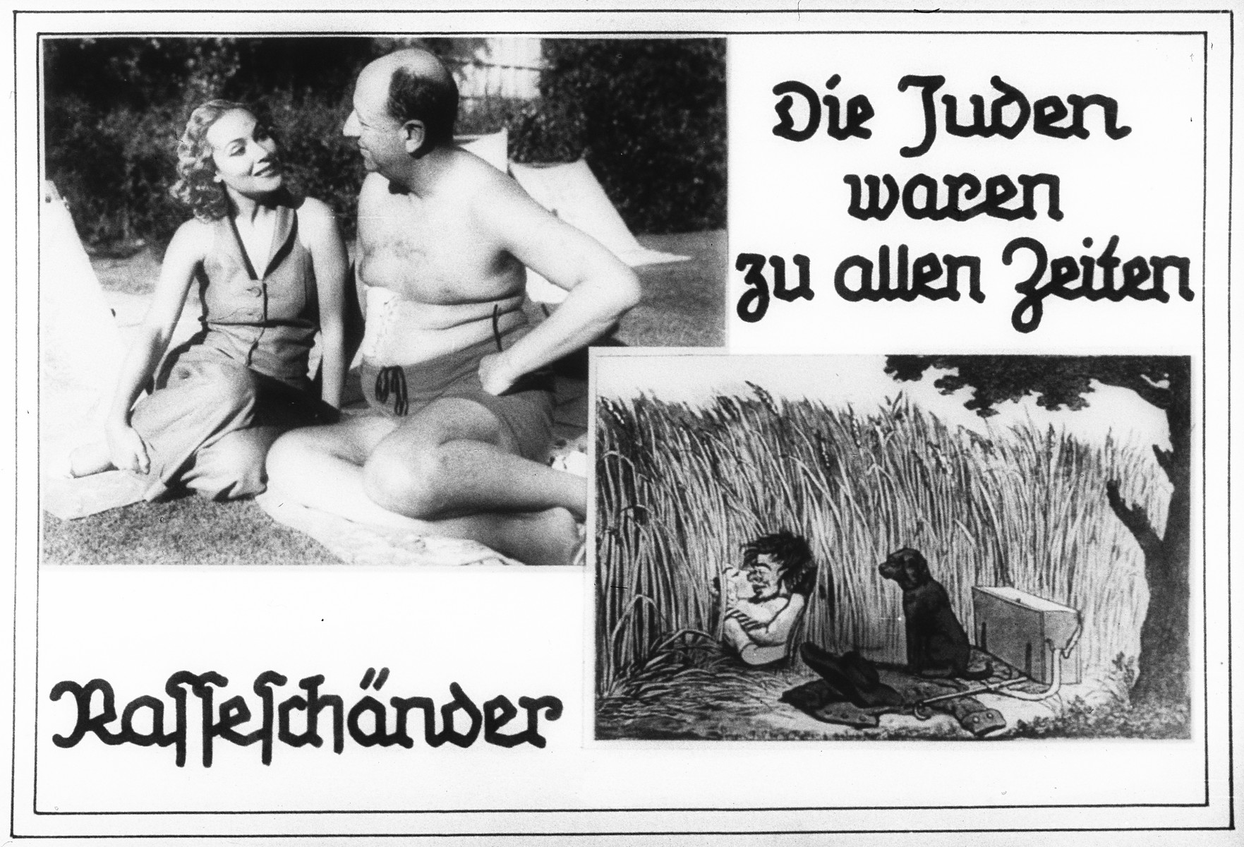 "Propaganda slide entitled ""The Jews have always been Race Defilers."""