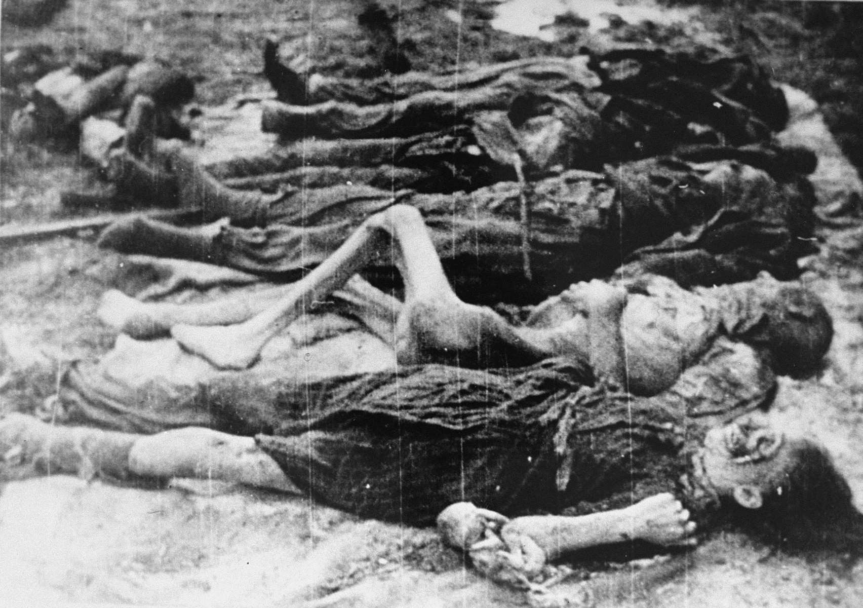 Corpses of murdered victims in Auschwitz.