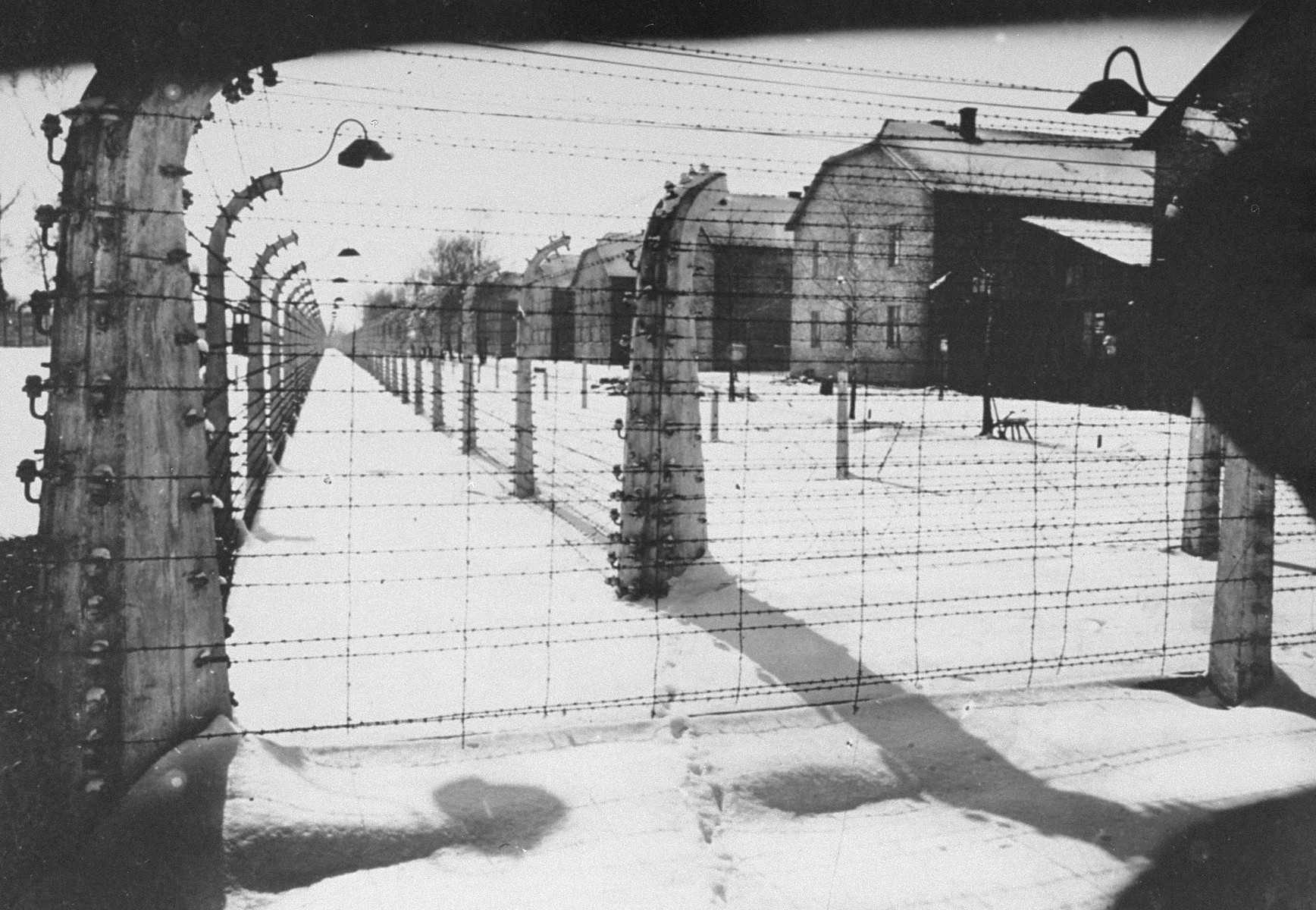 View of a section of the barbed wire fence and barracks at Auschwitz at the time of the liberation of the camp.