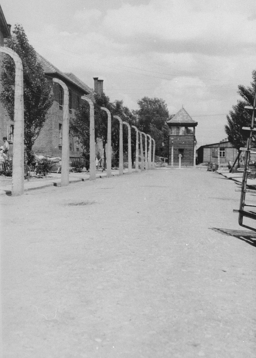 View of a road in the Auschwitz concentration camp.
