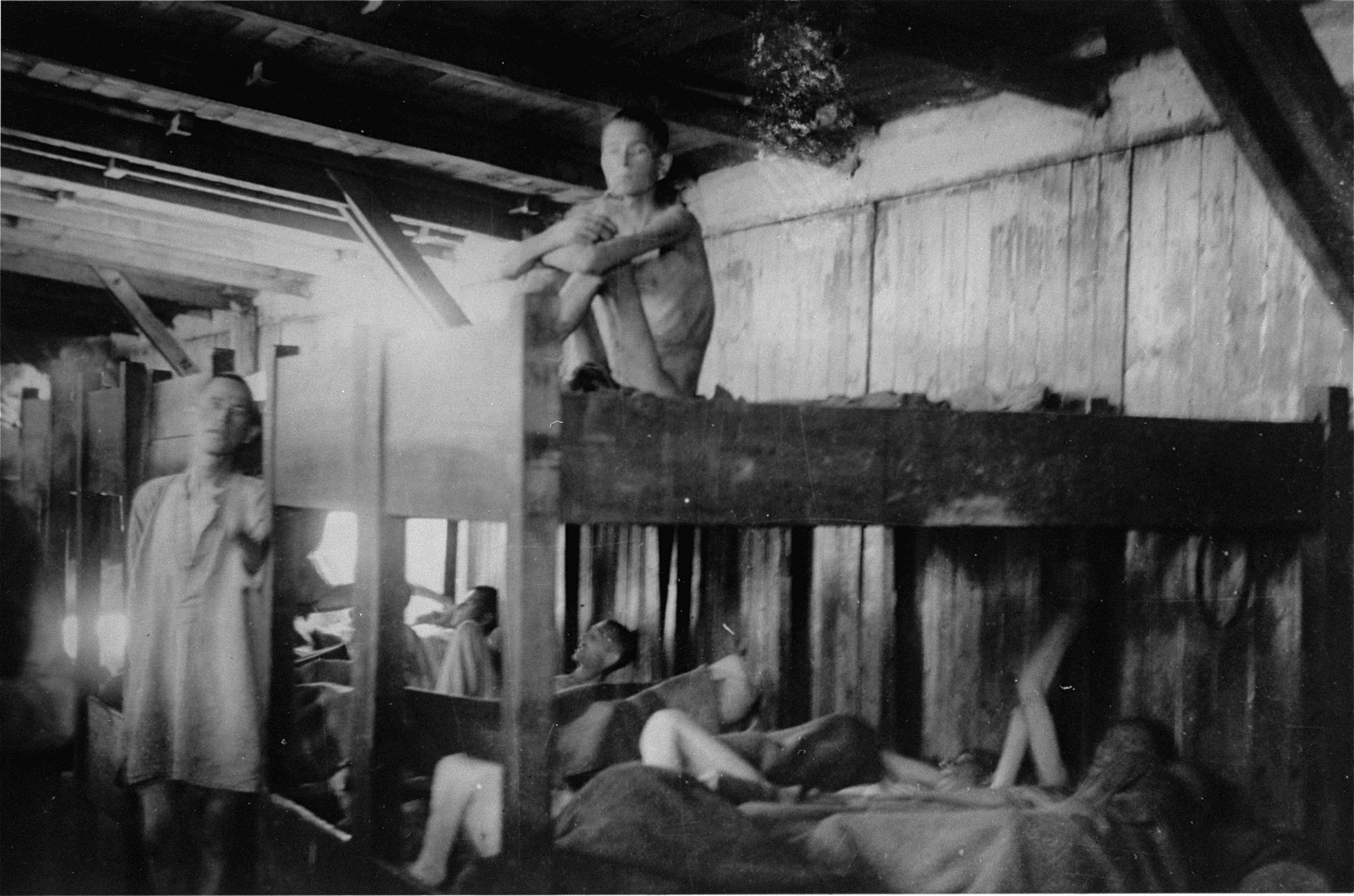Emaciated survivors of Mauthausen in their barracks soon after liberation.  Sitting on the top bunk is Lysakow Michael (b. June 4, 1908).  He died on June 25, 1945 in the Mauthausen Evacuation Hospital from bronchitis.
