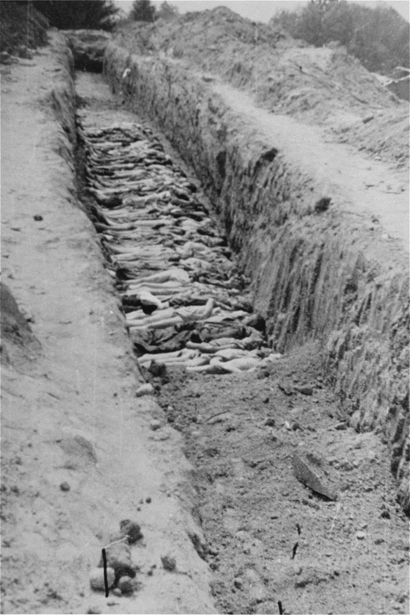 The bodies of former prisoners are laid out in a mass grave at Mauthausen.