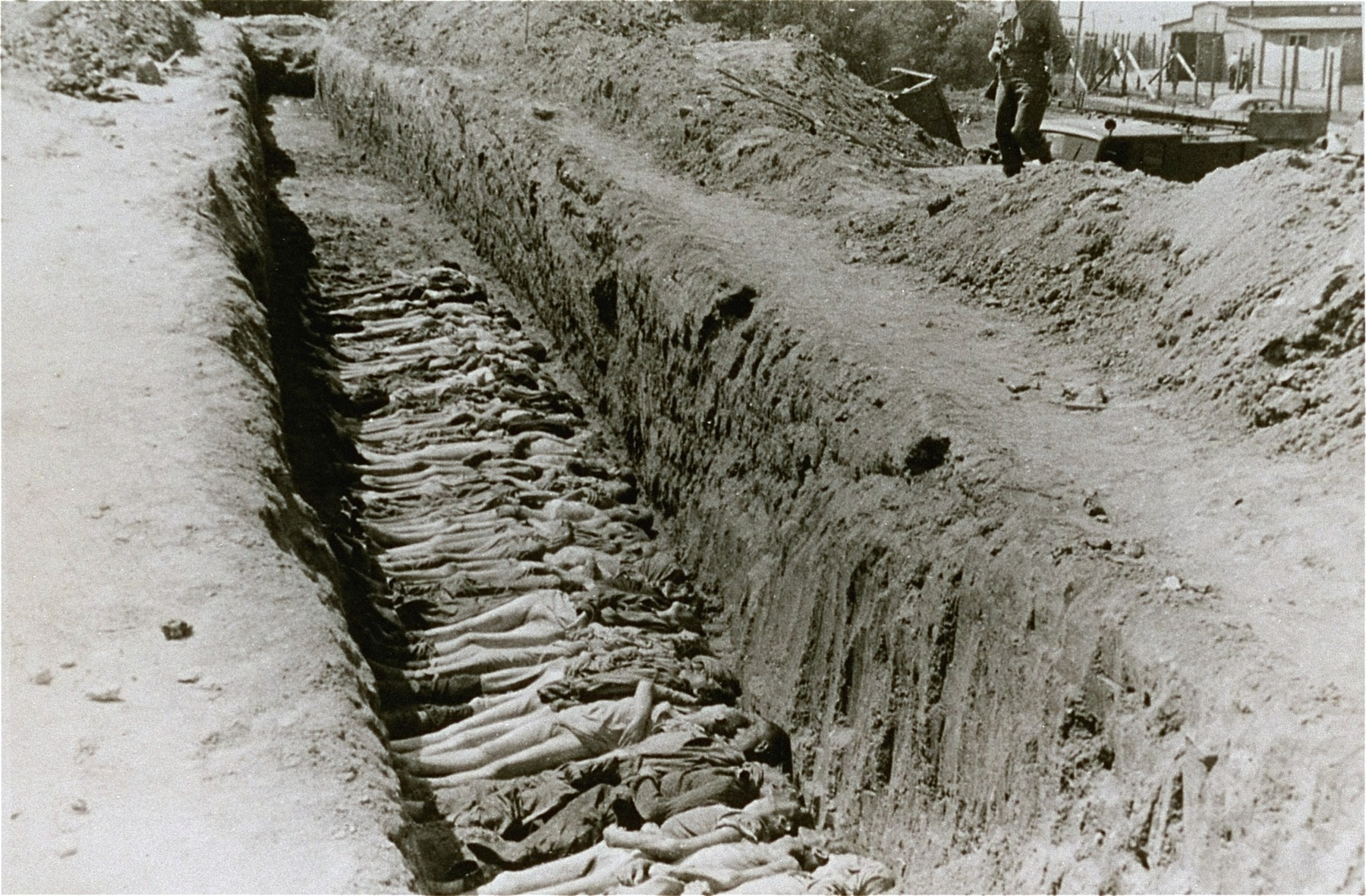 The bodies of former inmates are laid out in a mass grave in the Mauthausen concentration camp.