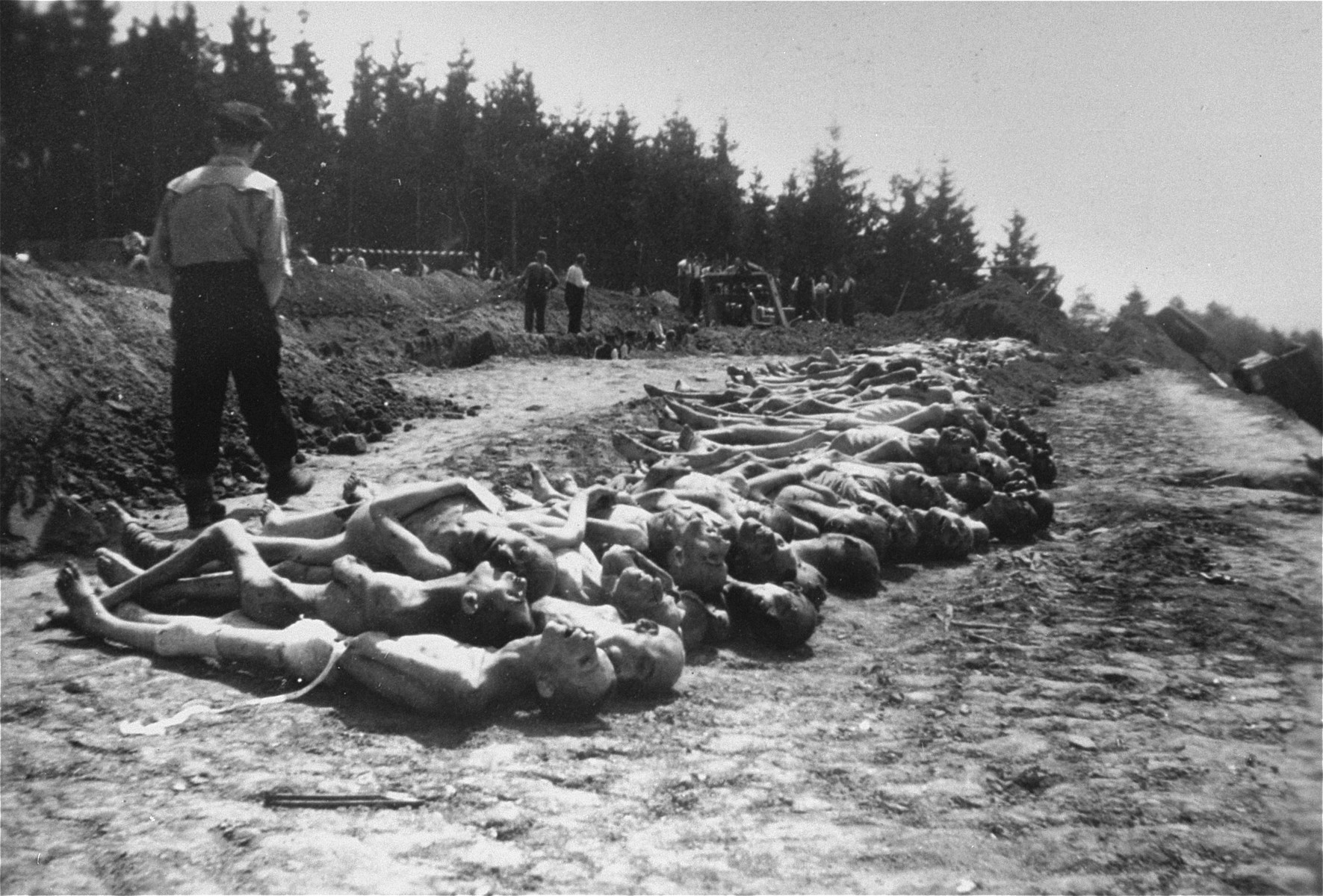 The bodies of former concentration camp inmates are laid out in a row in preparation for burial.    In the background Austrian civilians prepare a mass grave.