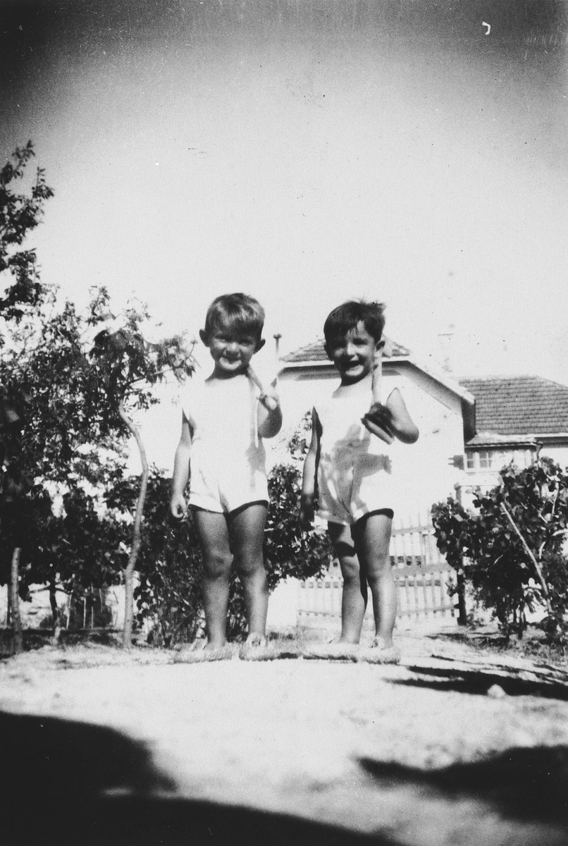 Peretz and Eliyahou Siaky pose in the garden with their shovels.