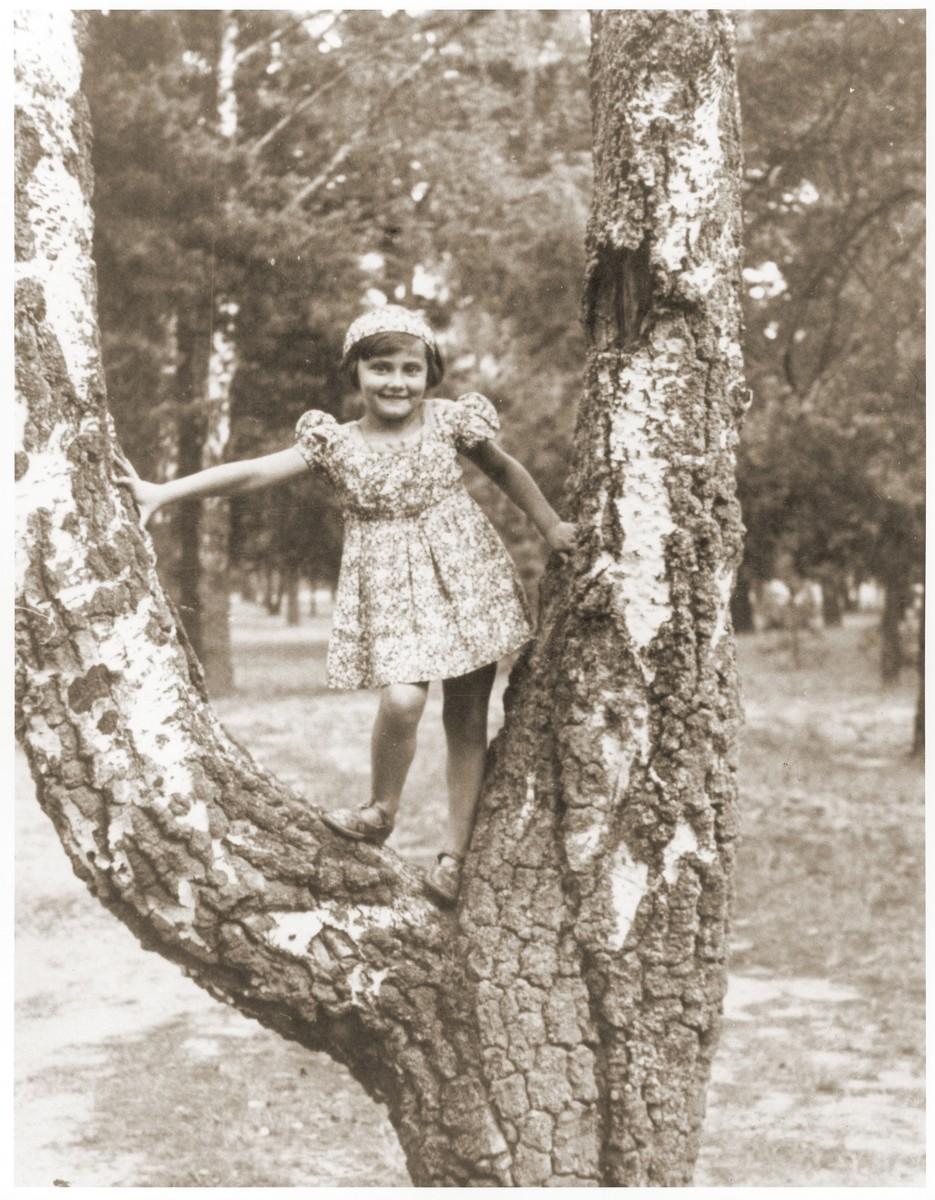 Salusia Goldblum poses in a tree in a park in Zarki.