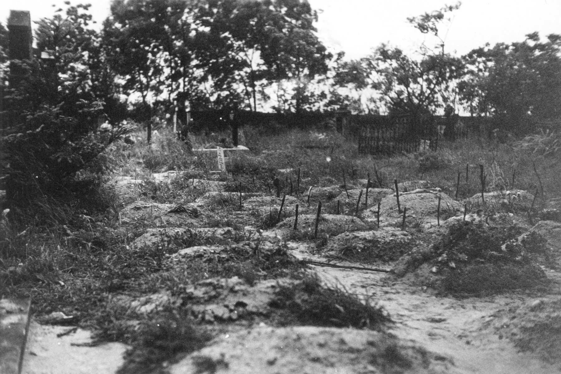 The burial ground for the Polish and Soviet infants who died in the nursery in Ruehen.  Each of the mounds is a mass grave of infants.