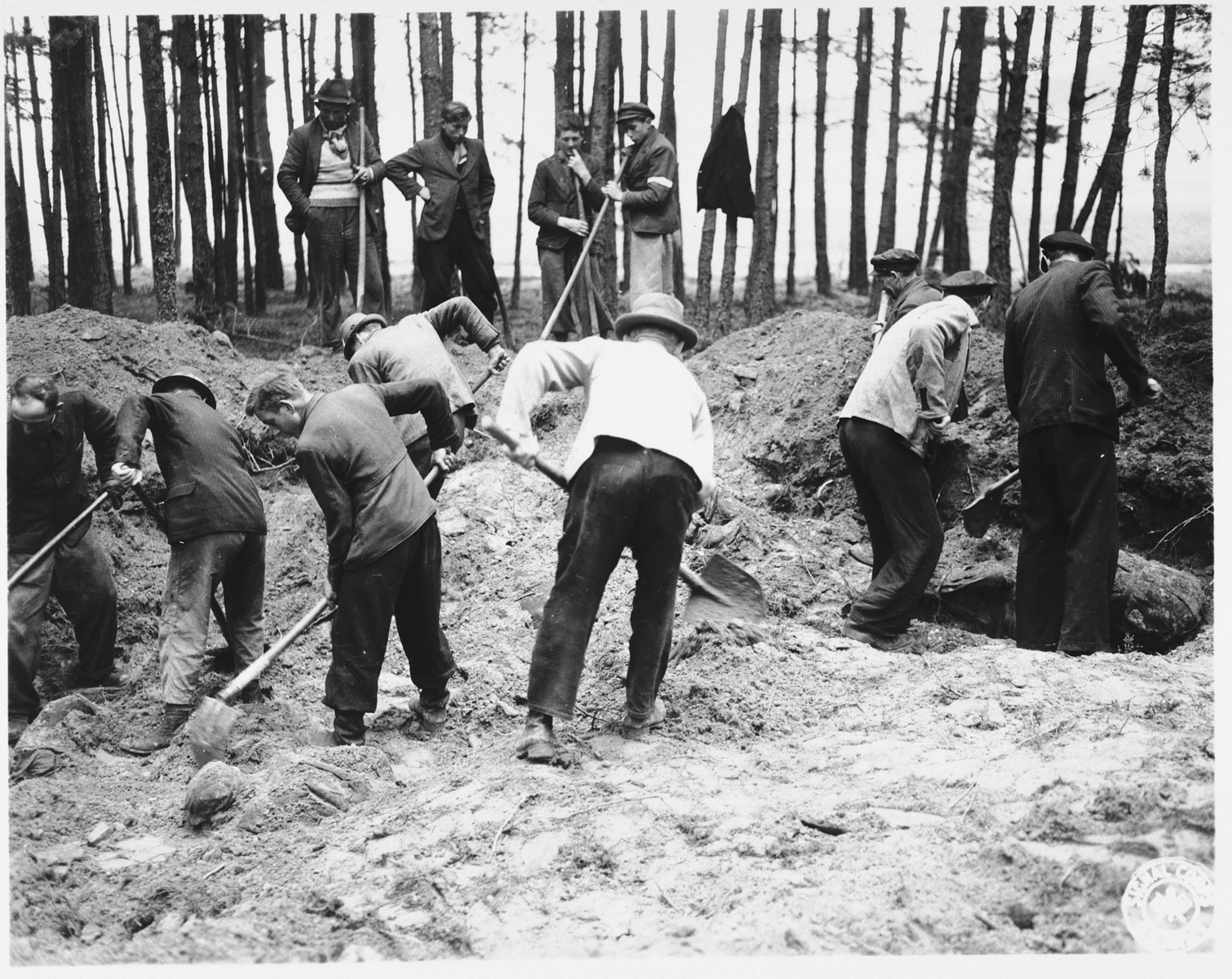 German civilians exhume bodies from a mass grave in Stamsried, Germany.  (Photograph taken by the 166th Signal Corps Company.)